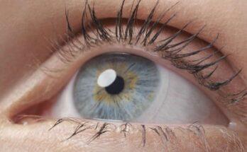 eye formula защиты зрения